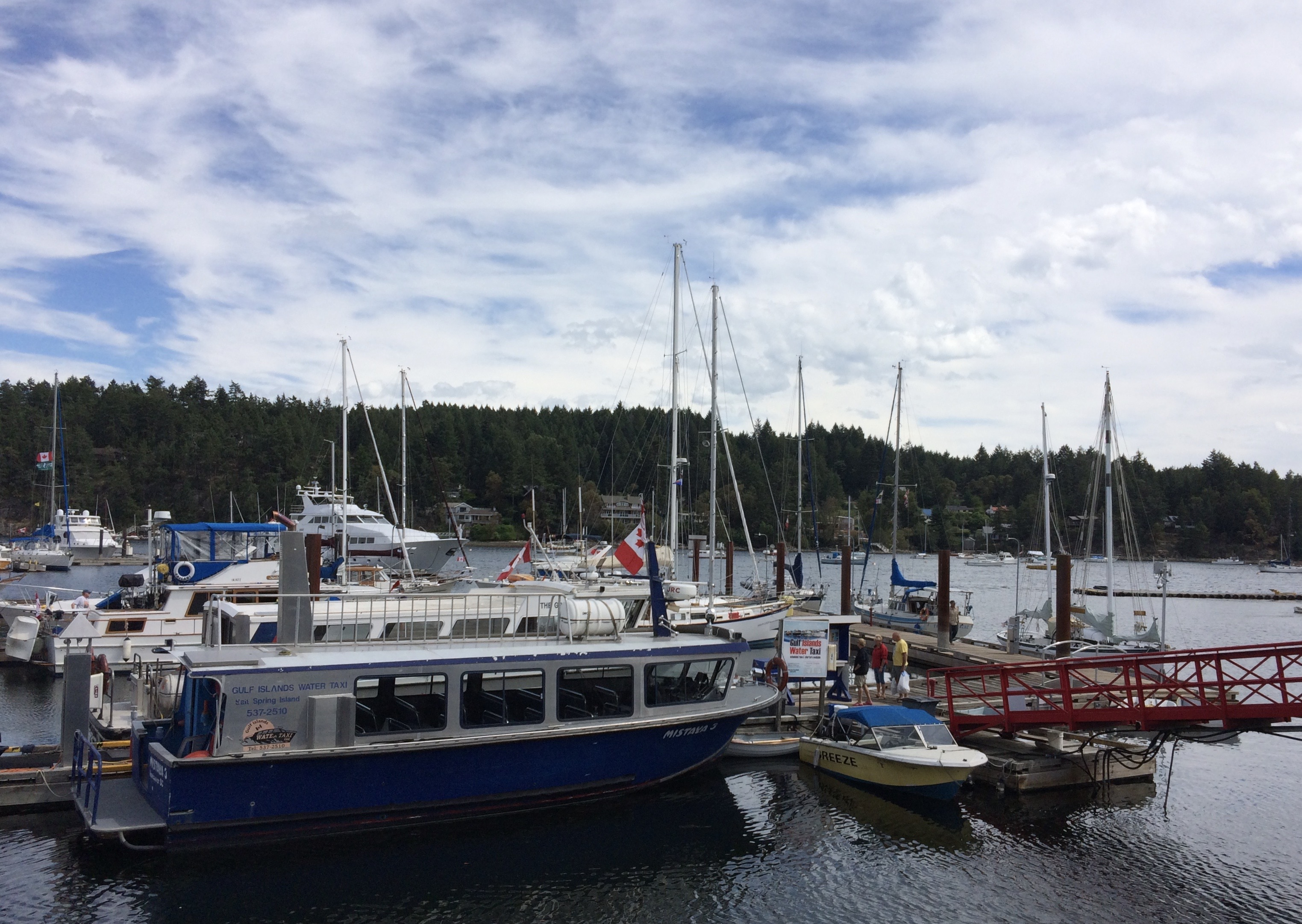 Boats tied up to a dock in the Salish Sea